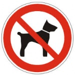 L-chien interdit